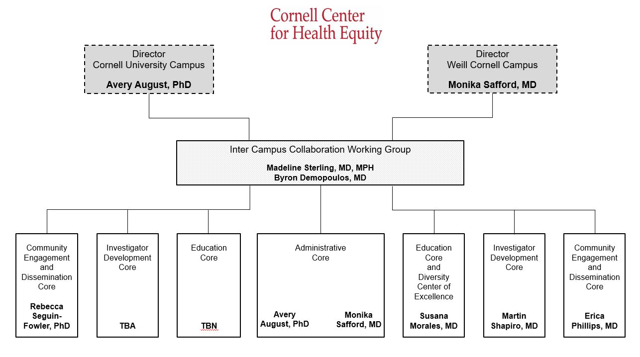CCHEq Organizational Chart. For an explanation of the chart, click the link in the caption